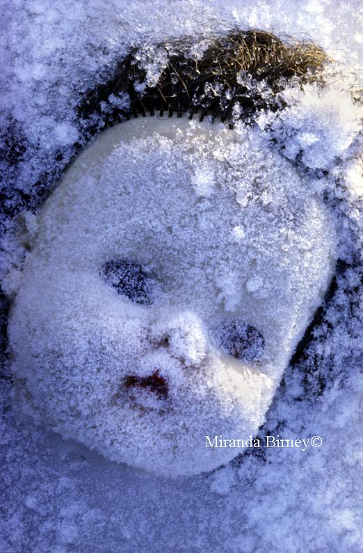 sneeuwwit
